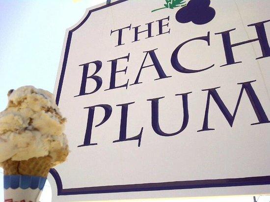 The Beach Plum: Roadside sign