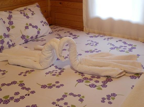 Doga Pansiyon: swan towels add the loveliness of this place.