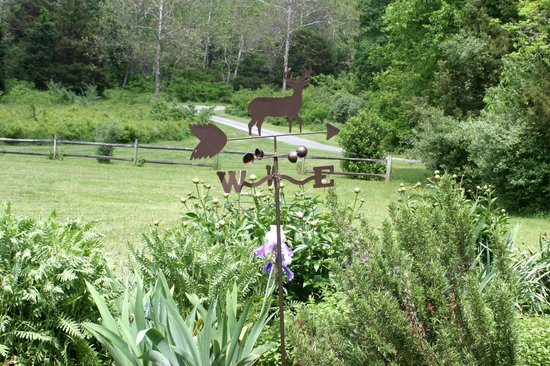 The Inn at Sugar Hollow Farm: The image captures the bucolic nature of this Inn with its meandering road through the woods.