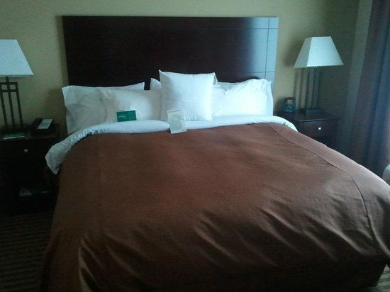 Homewood Suites Minneapolis - New Brighton: Bed