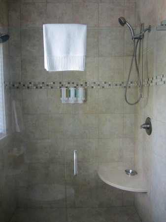 The Addison on Amelia Island: Double shower and bath products dispenser