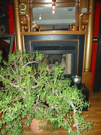 Blumen Garden Bistro : Fireplace and amazing Jade plant...