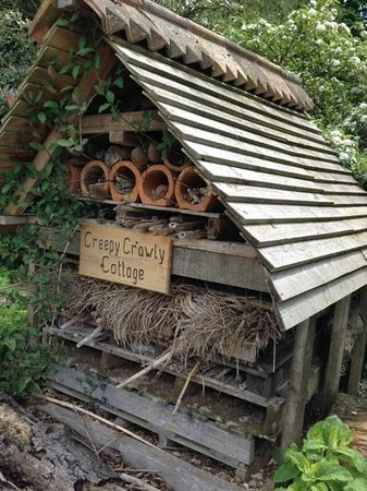 Boughton House: recycled bug hotel