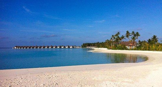 Niyama Private Islands Maldives: Strand mit bungalows