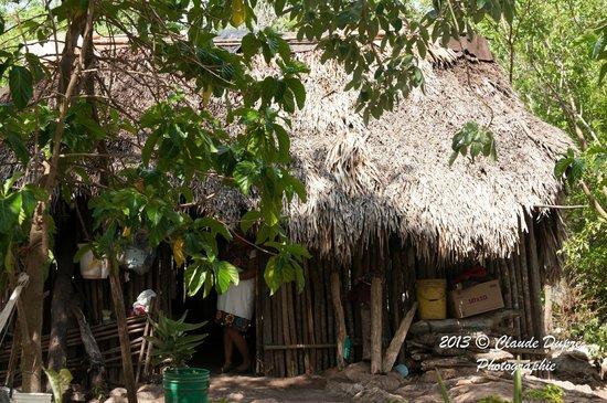 Barcelo Maya Caribe : Maya