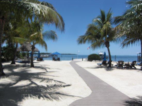 Island Bay Resort: The beautiful beach
