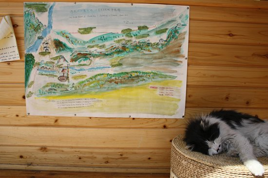 Great Wall Box House (Beijing) : Our only map for local trekking & a resident cat