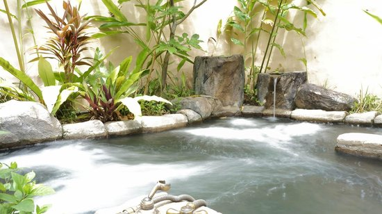 The Banjaran Hotsprings Retreat: In room Jacuzzi