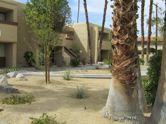 Desert Vacation Villas: Property landscaping