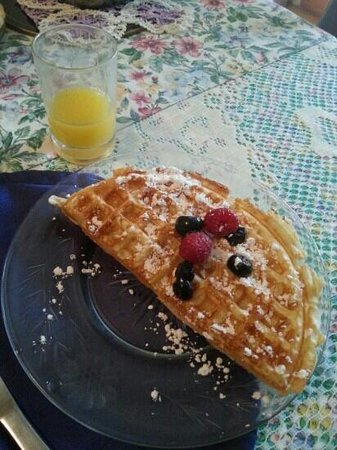 Australis Guest House: Delicious Breakfast