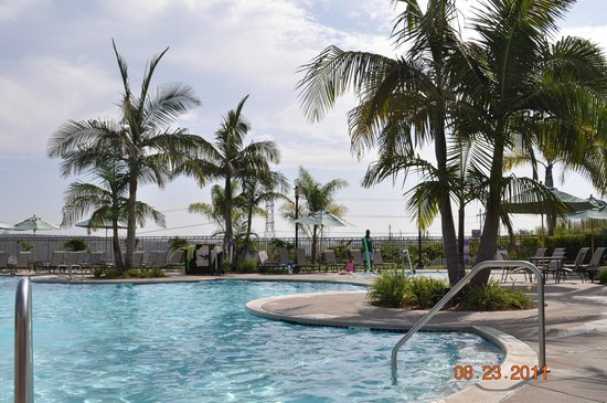 Sheraton Carlsbad Resort and Spa : Pool Area