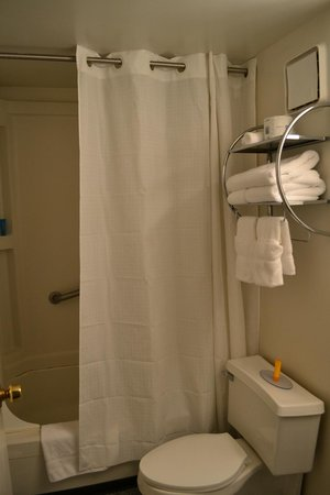 Constitution Inn: Shower is basic but needs a bit of repair