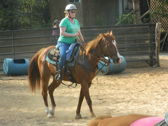Makena Stables: My wife's horse, helmet is optional