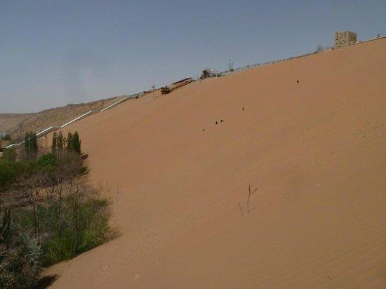 Shapotou Tourist Zone: Gorgeous sand dune, Shapotou, Zhongwei, Ningxia