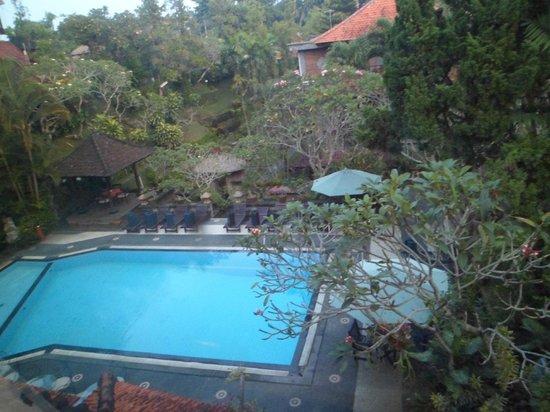 Artini 2 Cottages: บริเวณสระว่ายน้ำ