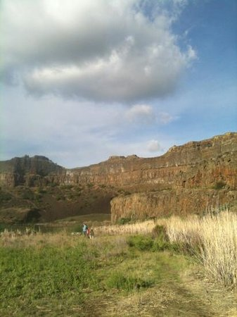 view within Dry Falls near the lake
