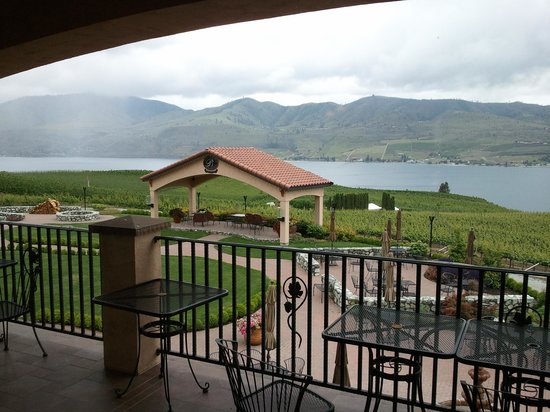 Benson Vineyards Estate Winery: grounds with view