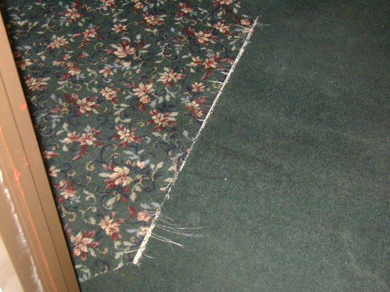 Ramada Morgantown Hotel & Conference Center: Frayed carpet in hallway