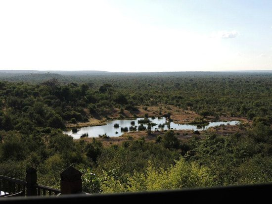 Victoria Falls Safari Club: Watering hole