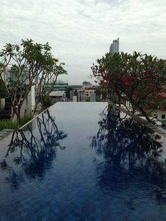 Kemang Icon Hotel : Don't be fooled by the website photos. It is just a small lap pool!