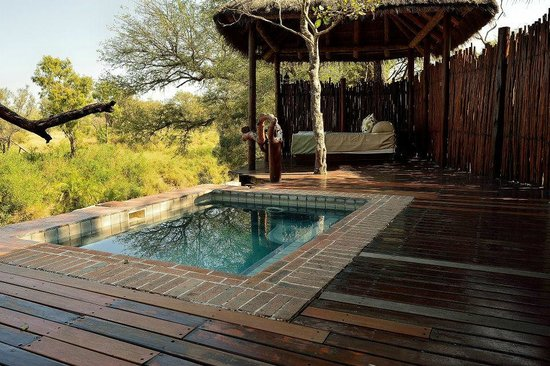 Simbambili Game Lodge : Room no. 1 pool