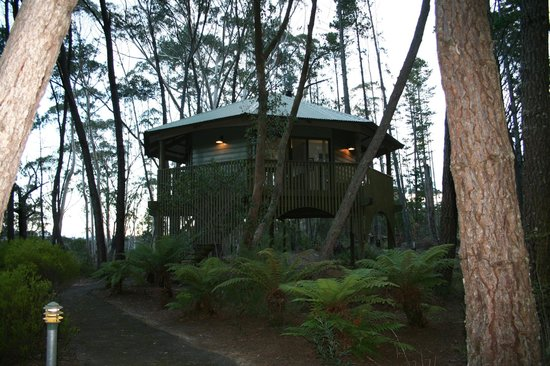Federation Gardens & Possums Hideaway: Cabin
