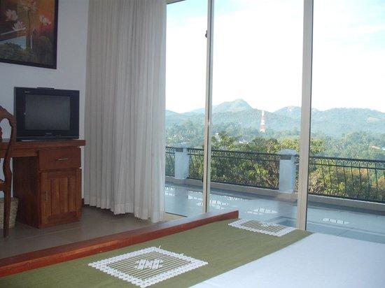 Elegant Hotel: Room View 1