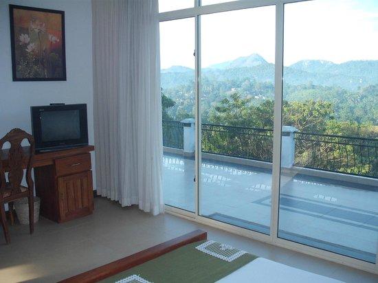 Elegant Hotel: Room View 2