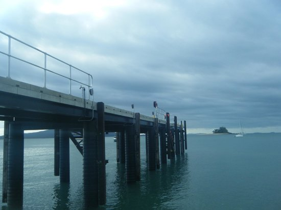 Mission Beach Dunk Island Water Taxi: New jetty on Dunk island