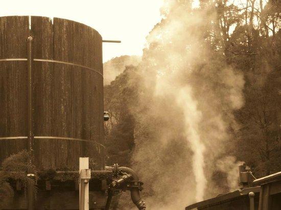 West Coast Wilderness Railway: steam from funnel of train...