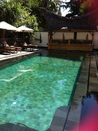 Scallywags Resort: Pool