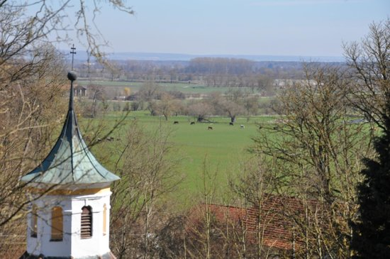 Kloster Holzen Hotel: View from the grounds