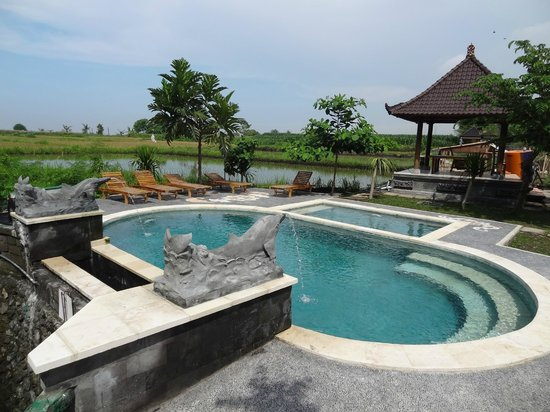 Nirmala Guest House: Pool