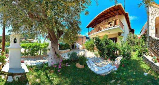 Afroditi Pansion: garden yard