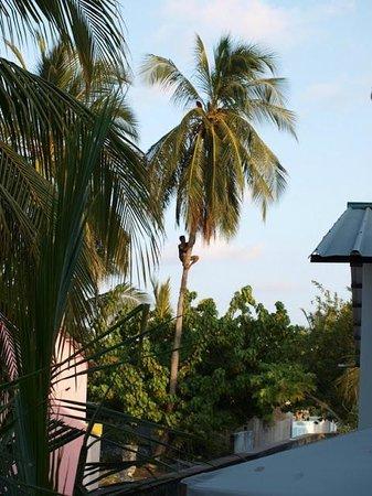 Leisure boutique hotel maafushi island maldiverne for Boutique hotel 63