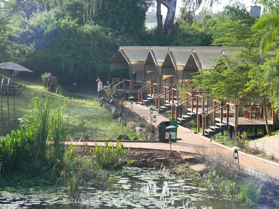 Wildebeest Eco Camp: View from dining area