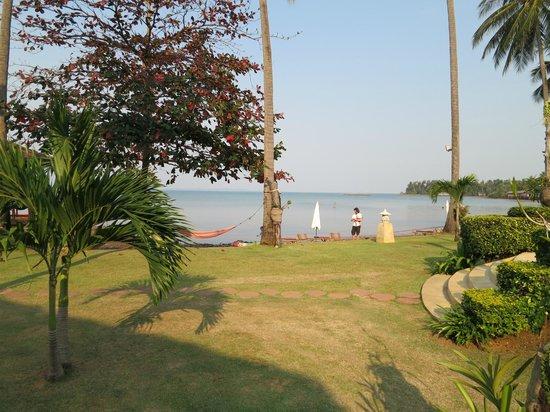 Amber Sands Beach Resort Tripadvisor