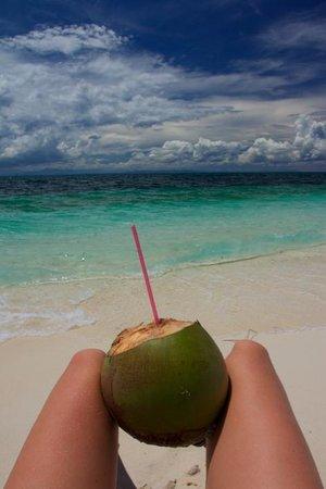 AABANA Beach & Watersport Resort Malapascua: don't miss Malapascua's coconuts :o)