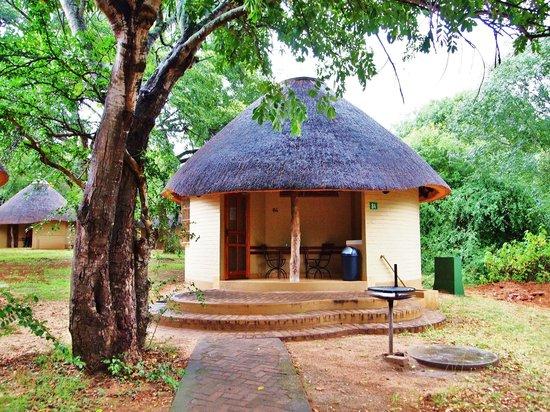 """Skukuza Rest Camp : """"Mein"""" Bungalow N° 84"""