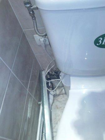 Ambassadeur Hotel : WC