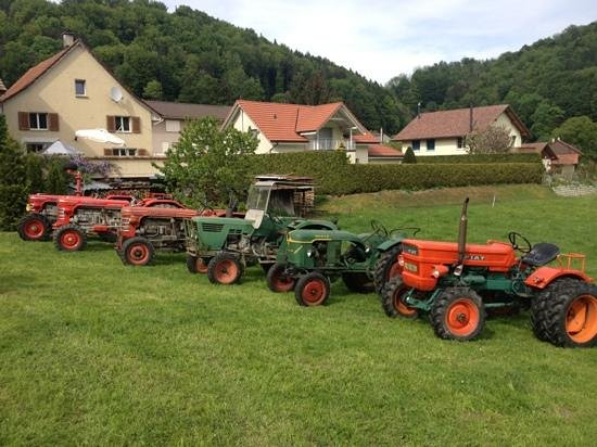Bichelsee Balterswil, Schweiz: Trecker Ausstellung