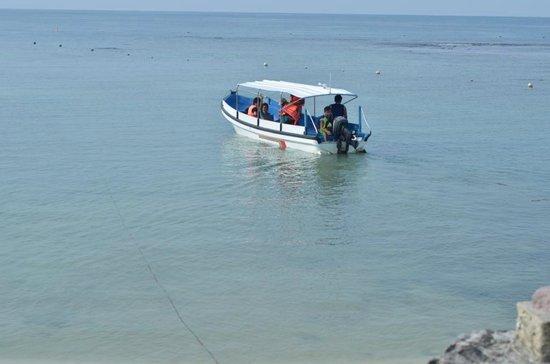 Kalicaa Villa Resort: the beach