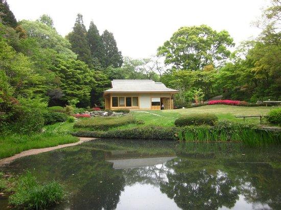 Tea house - Picture of Higashiyama Zoo & Botanical Garden, Nagoya - TripA...