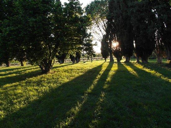 Domaine la Carraire : Sonnenuntergang