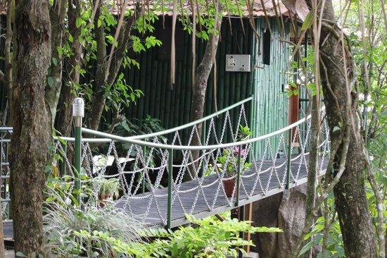 CYBELE HILL RESORTS: Tree House
