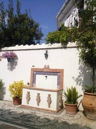 Apartamentos Montesclaros: La terraza