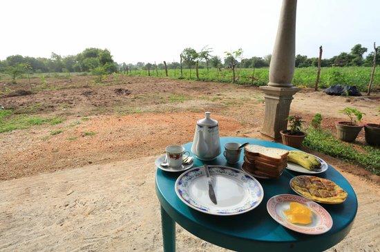 Village Garden Inn Bed & Breakfast: outside