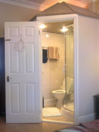 Ascot House Hotel: shower room at Room 9