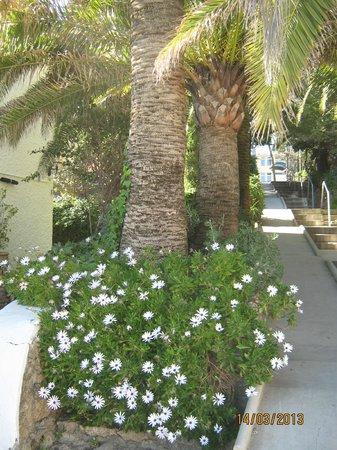 Apartamentos Torre de la Roca : Дорожка на пляж