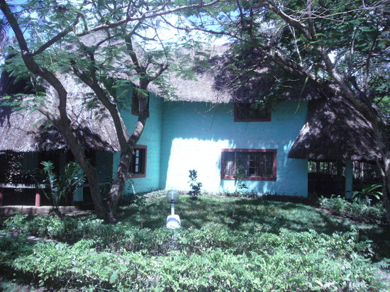 Limau Guesthouse